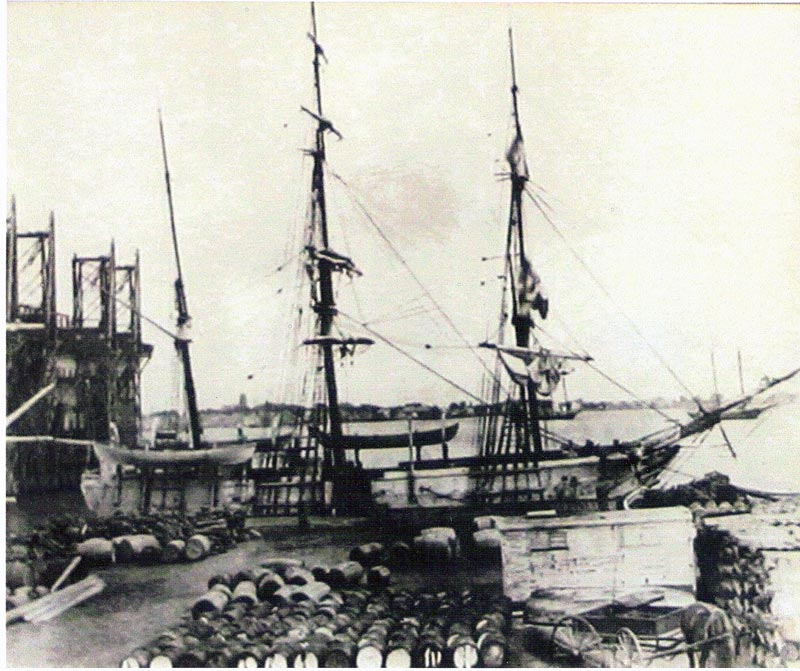 The New Bedford whaling ship, Catalpa