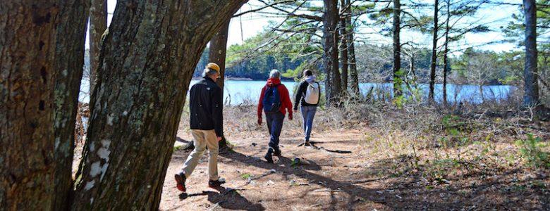 Myles Standish State Forest