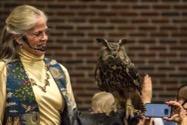Westport Owl event
